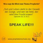 14 Bibelverse über Prophetie