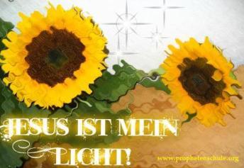Jesus ist mein Licht, Sonenblume