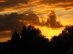 """Sonnenuntergang über Elmshorn (unbearbeitet ! - beachte die """"Taube""""...)"""