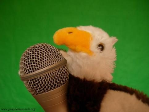 Adler mit Mikrofon