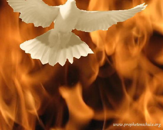 Einleitung Die Taufe Im Heiligen Geist Geistestaufe