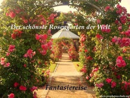 Der schönste Rosengarten der Welt Fantasiereise
