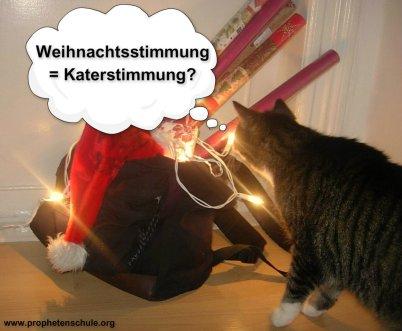 Weihnachtsstimmung Katerstimmung