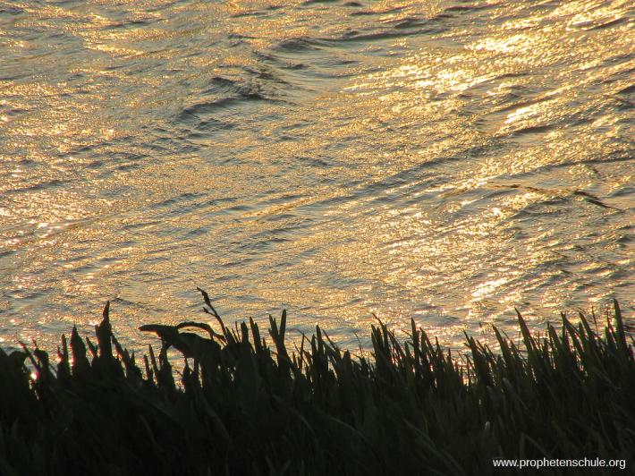 Goldener Fluss Strom Wonne_2