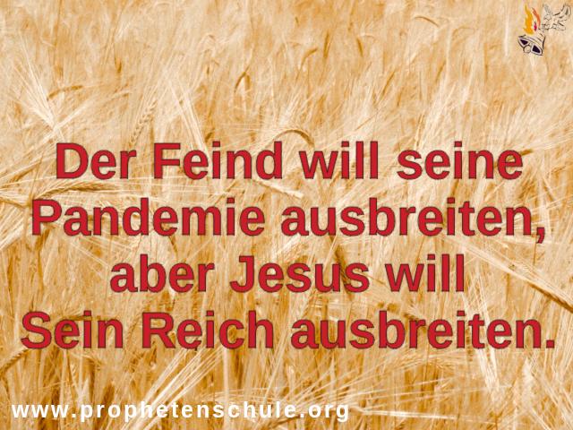 Feind Pandemie jesus reich Gottes ausbreiten