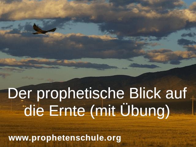 der-prophetische-blick-auf-die-ernte-mit-uebung