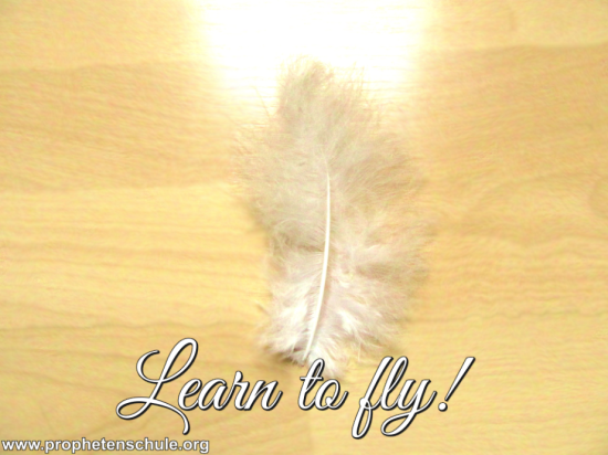 Learn to fly! Prophecy for 2016